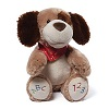 ABC123 Doggie Sound Toy